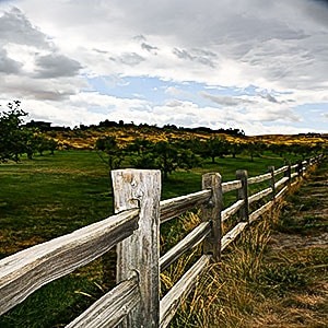 Boise Foothills - Idaho Real Estate