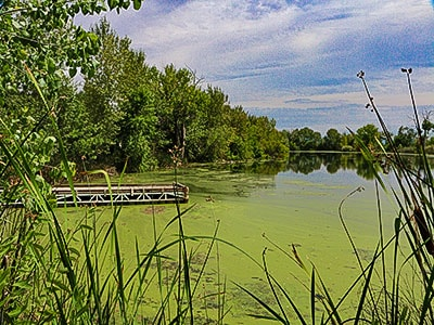 The dock at Duff's Pond in Middleton Idaho