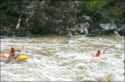Donnelly Kayakers on the Payette River