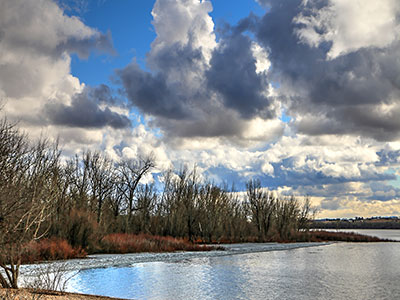 The shores of Lake Lowell in Nampa Idaho