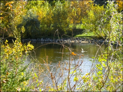 Caldwell real estate: Boise River