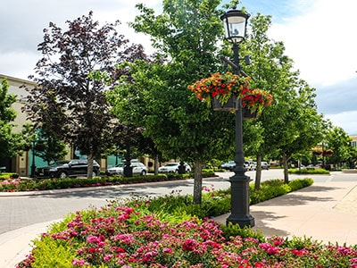 Flowers and trees lining the streets of the Village at Meridian